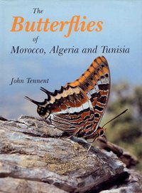 John Tennent: The Butterflies of Morocco, Algeria and Tunisia
